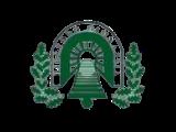 Birštono gimnazija